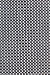 Black/White Braid5